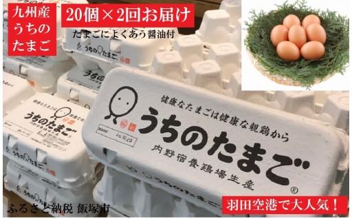 うちのたまご 醤油セット 2回お届け 羽田空港でおなじみ!