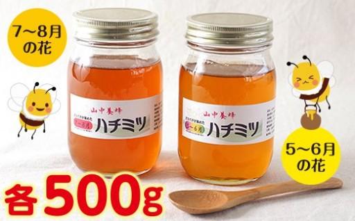 【自然のまま】富津産ハチミツ食べ比べ500g×2本
