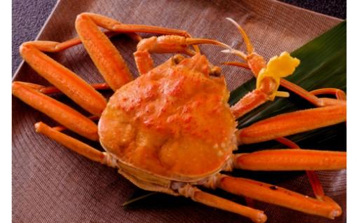 福井人はむしろこちらを選ぶ。蟹味噌と卵に感動 せいこがに特大