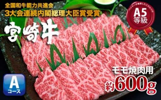 精肉バイヤー選りすぐり!【宮崎牛モモ焼肉用A】