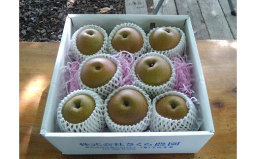 【新商品】期間限定の梨の詰め合わせはいかがですか。