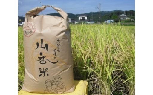山香ゆうきの会の米30kg(玄米:あきさかり)