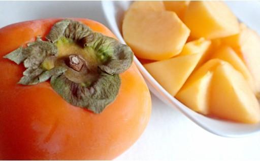 【個数限定で復活!】高栄養価フルーツ「大秋柿」 3㎏程度!