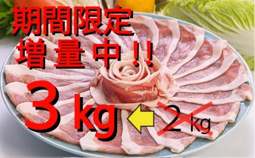 【感謝企画】ブランド豚すきしゃぶ肉3kg味くらべセット