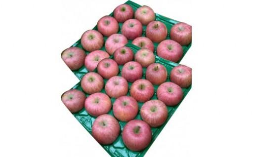 【新着!たっぷり10kg!】山形産ふじりんご