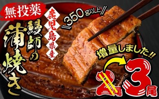 【無投薬】鰻師の蒲焼 118g以上3尾!!」