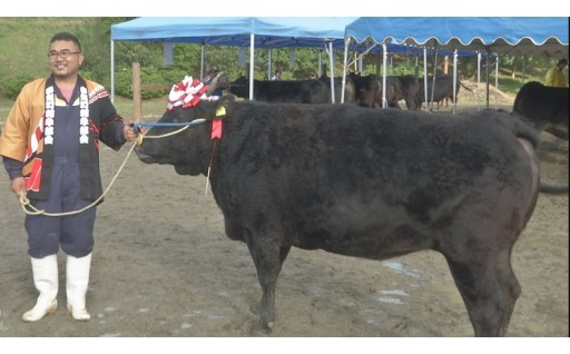 今年のチャンピオン決定!多気町肉牛共進会!!