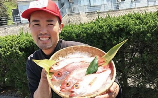 【この男の目利き!~浜田の旨い鮮魚3回お届けコース~】