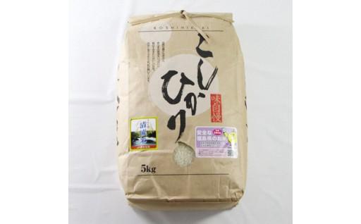 【岩瀬清流米】粒ぞろいの良い極上米です