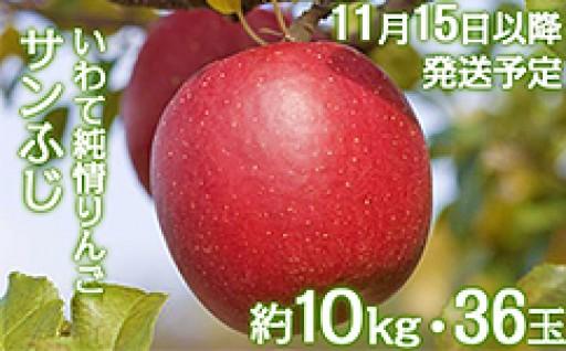 〆切間近!岩手県産【いわて純情りんご】サンふじ10kg!