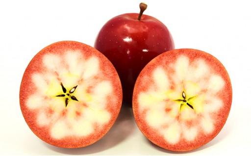 激レア ポリフェノール3倍りんごをお届けします!