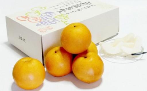 【極上の味!】本日、FMラジオで紹介された「朝倉・旬の梨」