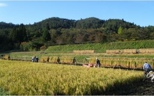 限定出荷!!無肥料、無農薬、天日干しの「勘六縁」のお米です!