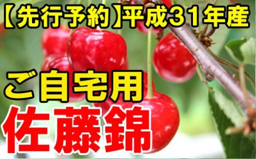平成31年産さくらんぼ、先行予約開始!