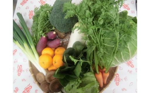 じばさんずから、旬の冬野菜をお届け!