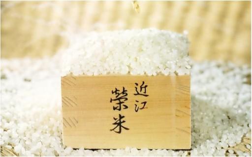 榮米コシヒカリ、ヒノヒカリ、にこまる各5kgの豪華米セット!