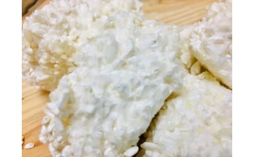 北海道産〈生〉こうじ!手作り甘酒や味噌が作れる、安心無添加