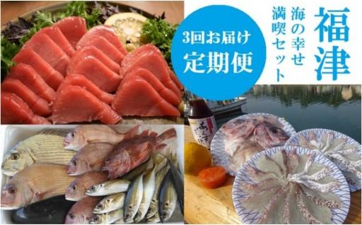 マグロと真鯛と玄界灘の地魚と。海の幸せ満喫セット【定期便】