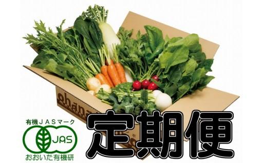 有機JAS認証のオーガニック野菜セットを毎月お届けします♪