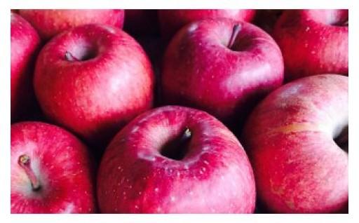 上山市から注目ワードでもお馴染みの「りんご」をお送りします!