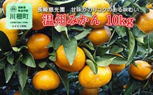 長崎慈光園 温州みかん(大津)10kg