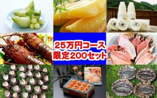 年末限定受付!豪華定期便25万円コース(年13回お届け)