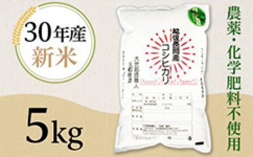 大地創造職人「反町敏彦」新潟県産コシヒカリが人気です!