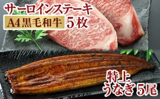 鹿児島贅沢セットうなぎ5尾&黒毛和牛サーロインステーキ1kg