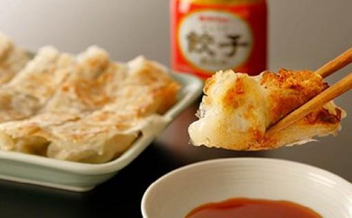 佐多の田中肉屋ニンニクたっぷりやみつき餃子(タレ付)