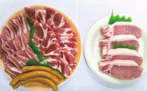 ケンボロー芙蓉ポーク【焼き肉セット&ロースステーキ肉】