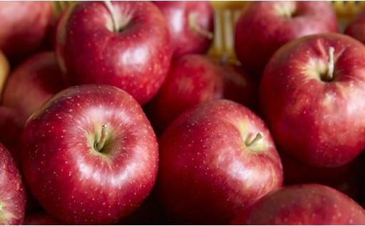 米崎りんご最後の予約受付中