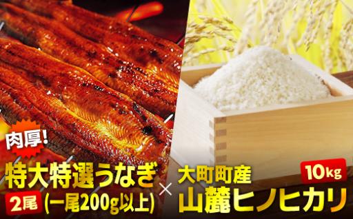 特大(200g以上)うなぎ2尾と佐賀の新米でうな丼を食す!