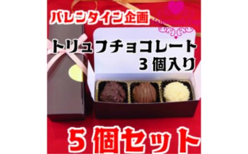 限定10セット【バレンタイン企画】トリュフチョコレートセット