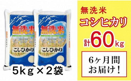 【毎月届いて便利】「無洗米コシヒカリ6回定期便」