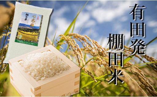 美味しいご飯🍚有田発の棚田米🌾心感鮮シンカンセン10kg