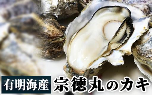 有明海産 漁師厳選極上『殻付き牡蠣』(加熱用)50粒