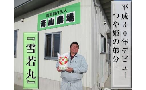 青山農場産 特別栽培米雪若丸5kg