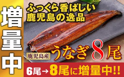 【今だけ2尾 増量中】鹿児島産特上うなぎ8尾!