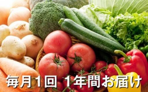 毎月1回 1年間お届け 旬の野菜詰合せ 頒布会