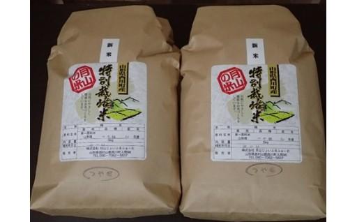 月山の米 平成30年産つや姫 特別栽培米