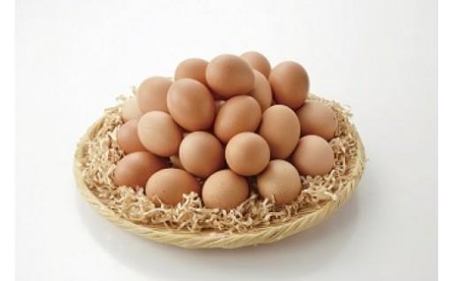 値上前のご案内!大人気!卵の定期便 30個を年12回お届け!