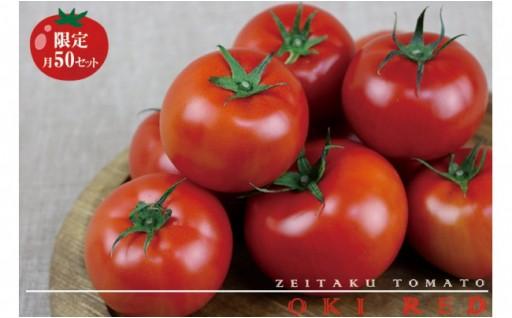 東村で採れたリコピンたっぷり『ぜいたくトマト』約1.5キロ