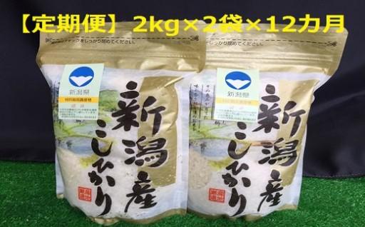【定期便】新潟県新発田市産特別栽培米コシヒカリ残り僅か!