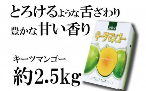 【2019年発送】神谷ファームのキーツマンゴー 約2.5kg