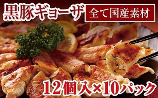 肉汁たっぷり!鹿児島県産黒豚ギョーザ10パック
