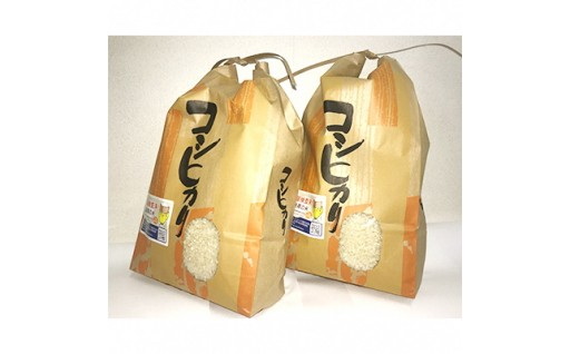 【須賀川産コシヒカリ】8kg(4kg×2袋)