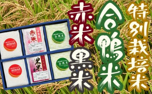 赤米、黒米に合鴨米。特別栽培米もある横芝光町産のお米セット。