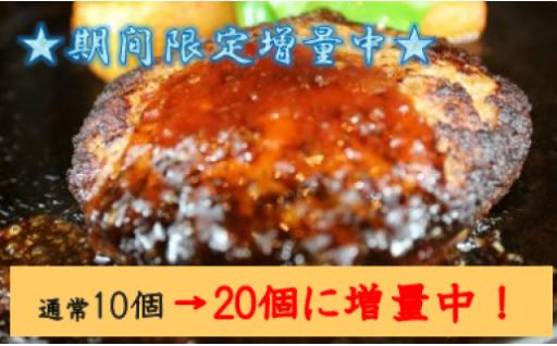 【新元号キャンペーン】期間限定増量中!馬肉ハンバーグ