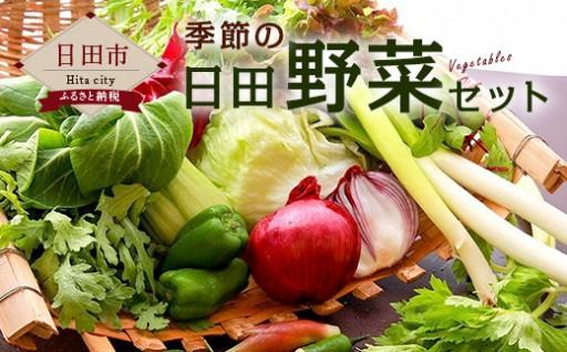 A-05季節の日田野菜セット
