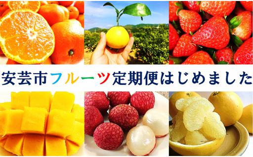 年5回のお楽しみ★★安芸市フルーツ定期便6.2万円コース★★